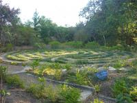 Brazil - Little Temple garden